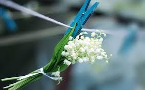 Синяя прищепка с цветами