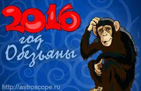 год обезьяны 2